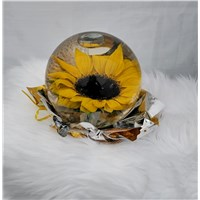 sunflower_dome